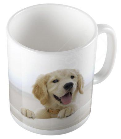 Kutya - Golden retriever bögre