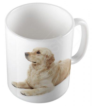 Kutya - Golden retriever kölyök bögre