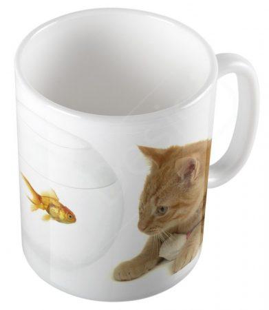 Cica-aranyhal bögre