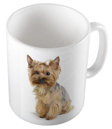 Kutya - Yorkshire terrier bögre