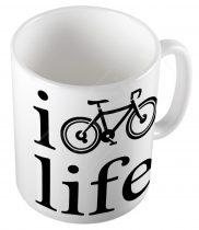Life CYCLIST  bögre